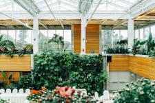 5 manieren om groen kantoormeubilair te integreren